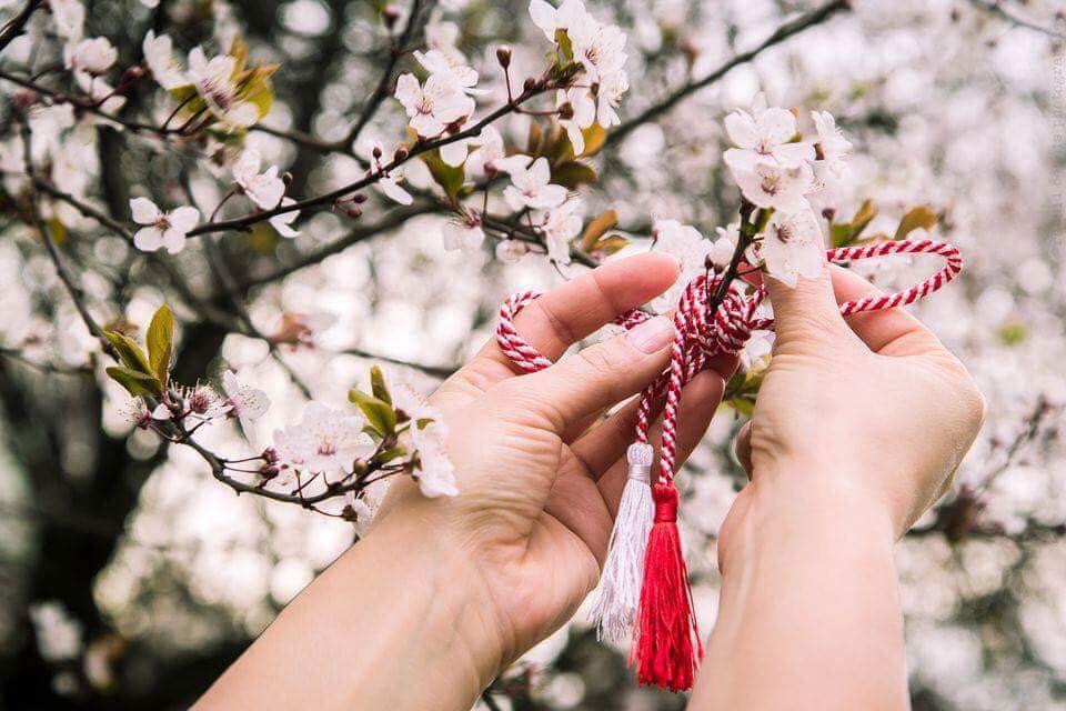 Vă felicit cordial cu prilejul sosirii primăverii, anotimpul renașterii și al reînvierii, al bucuriei și al fericirii!